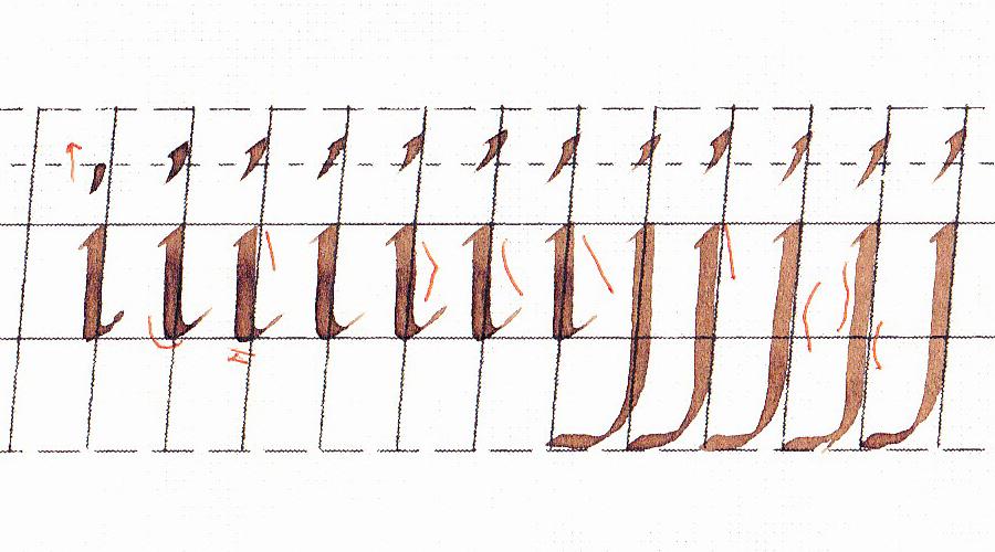 italics-practice-8-1