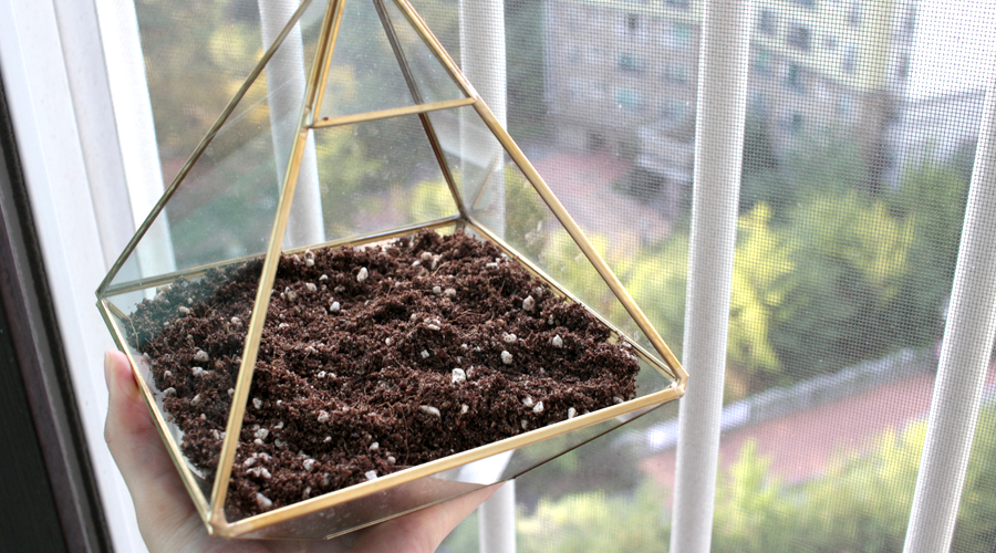 silentlyfree-2016-succulents-terrarium-diy-04