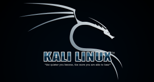 Install and Run Kali Linux On Android Device Virtually