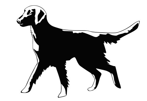 Plotterdatei Flat Coated Retriever