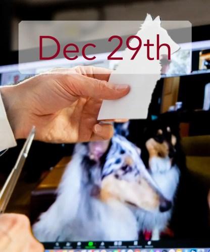 Dec 29th