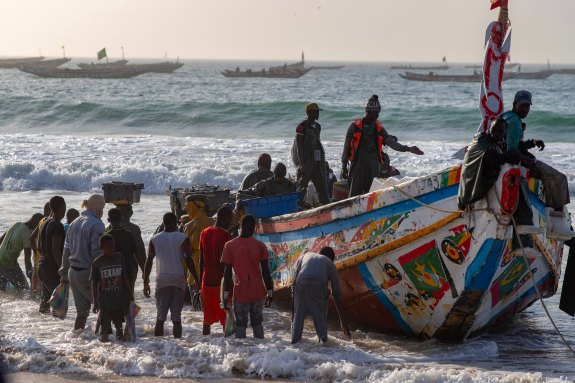 Fishermen boat carrying sardines on Nouakchott beach