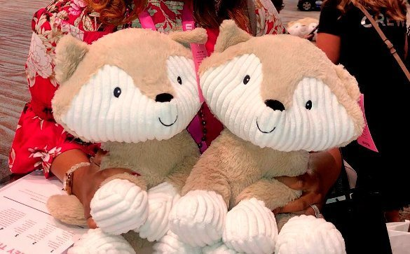 Two Finley The Fox fundraising plushies