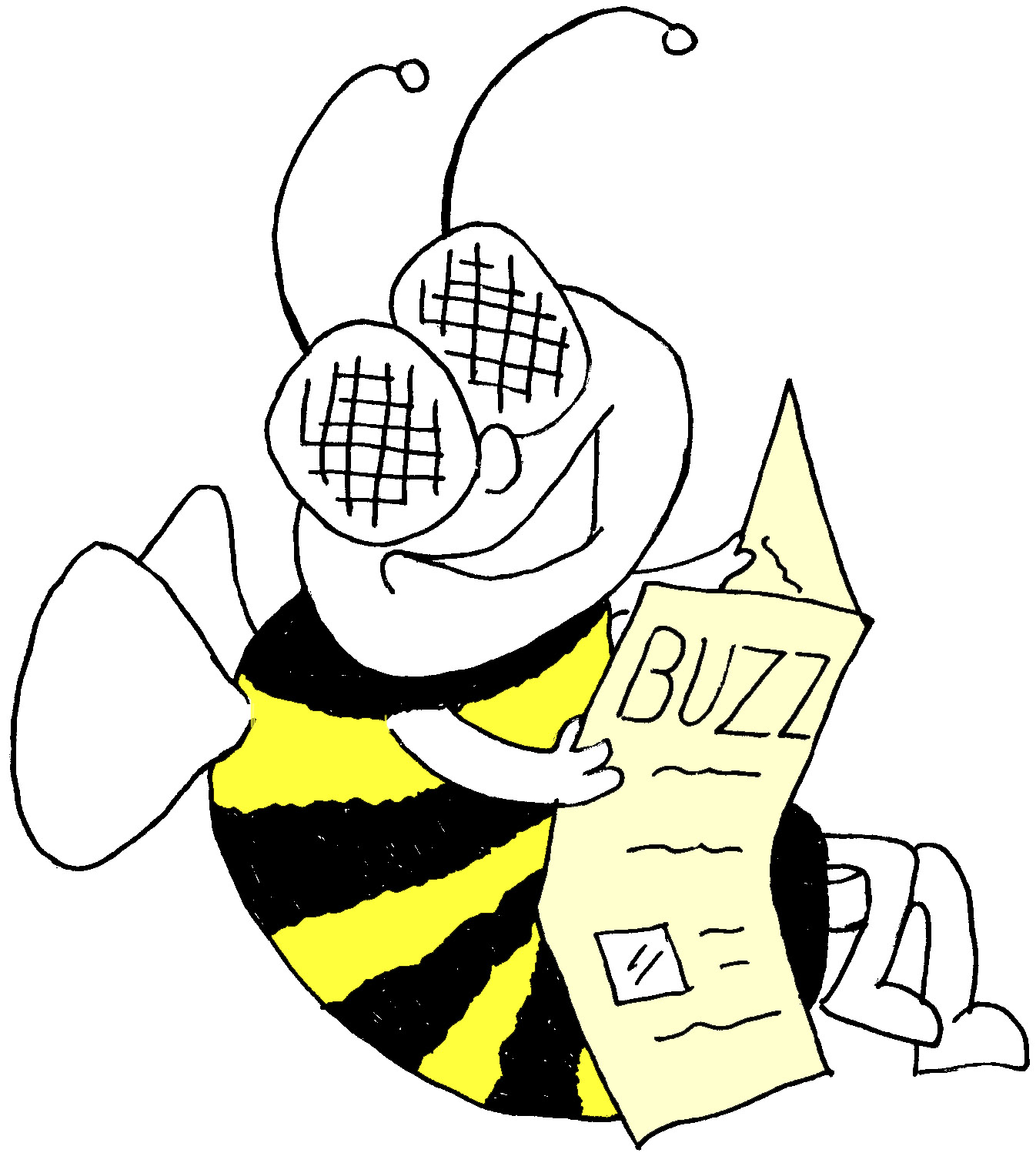 Read the latest issue of the Solway Buzz