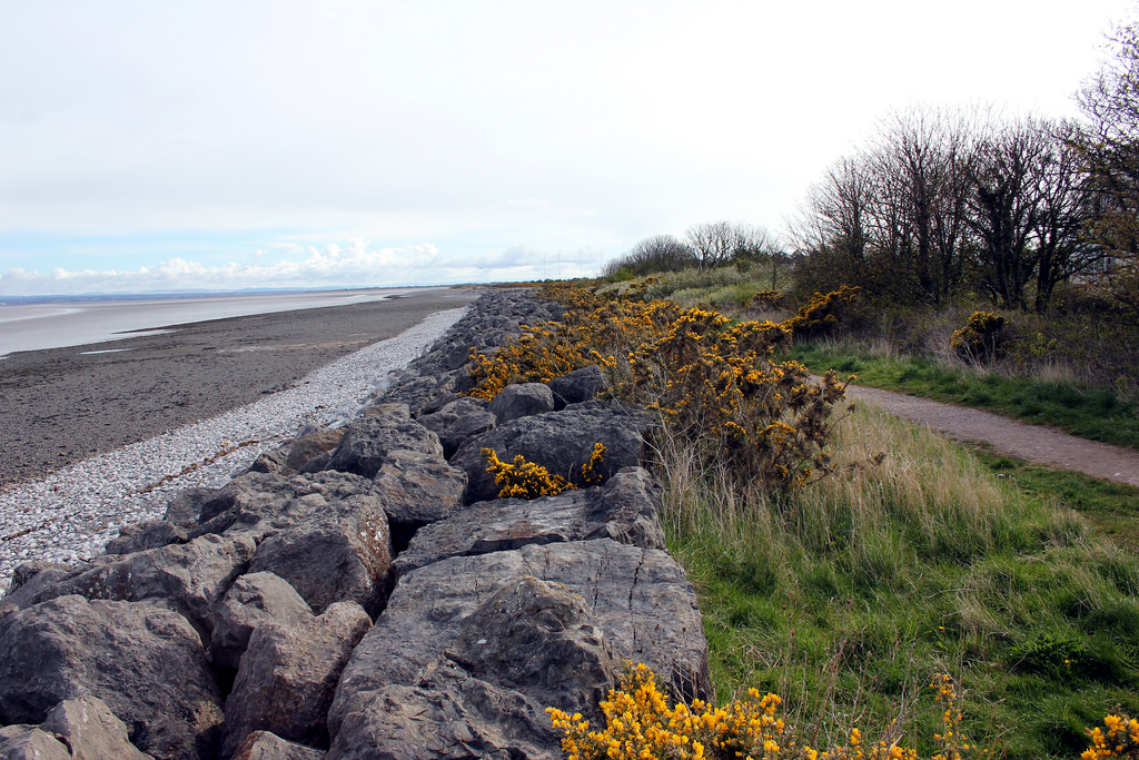 seafront and sea defences