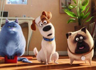 """Immagine dal film """"Pets - Vita da animali"""", Migliori film d'animazione 2016"""