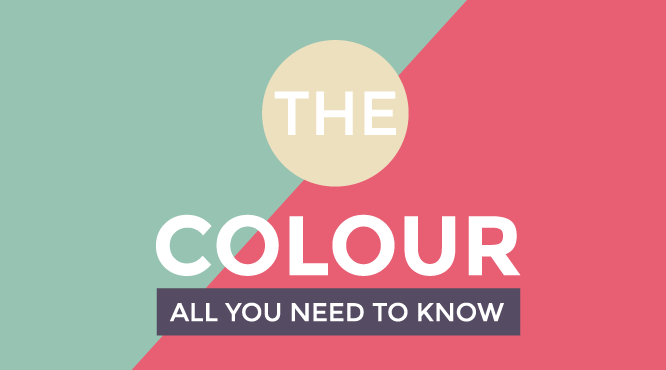 infographic-favorite-colour