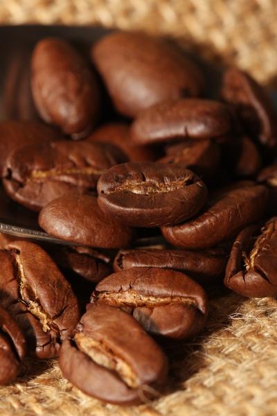 cafe-grano-cacao