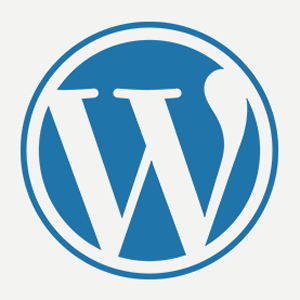 Actualización WordPress