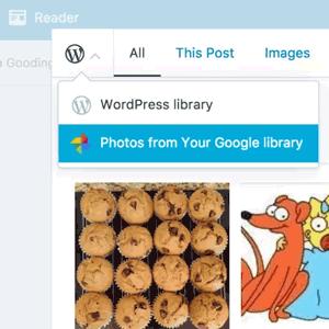 Integración Google Photos con WordPress