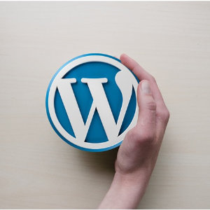 tienda en wordpress