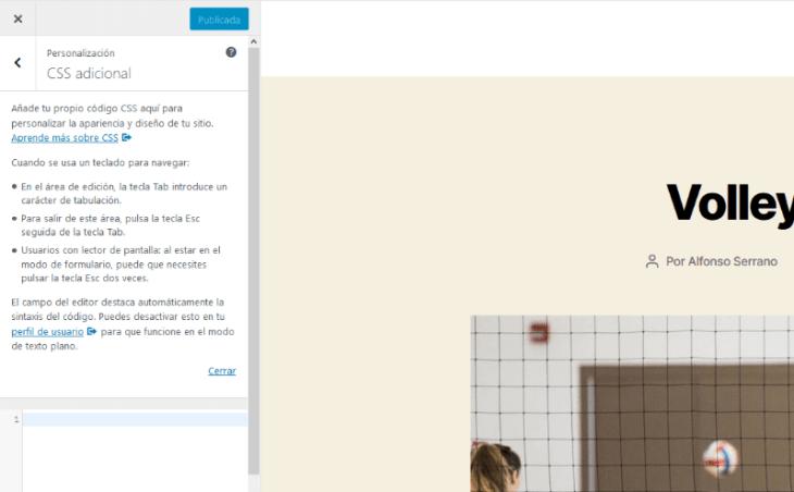 panel de css adicional dentro del customizer de wordpress