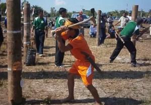 Ulasan tentang Upacara Manetek Kayu adat Kalimantan Tengah Yang Menarik