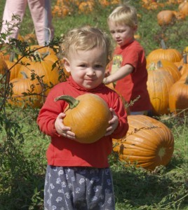 A dreamy day in the pumpkin patch. Rue's brother Isaac is in the red shirt.