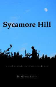 Sycamore Hill - A search for God when life doesn't make sense