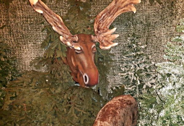 Der singende und bayerisch sprechende Elch