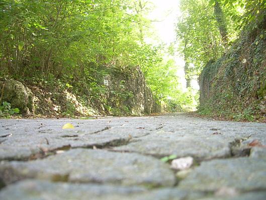Hügelweg hinterm Kloster Weltenburg