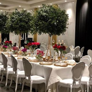 Tables and chair for party