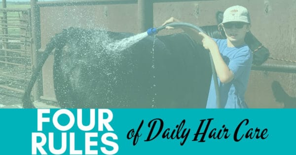4 Rules of Cattle Daily Hair Care
