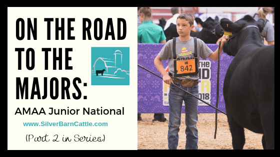 On the Road to the Majors: AMAA Junior National
