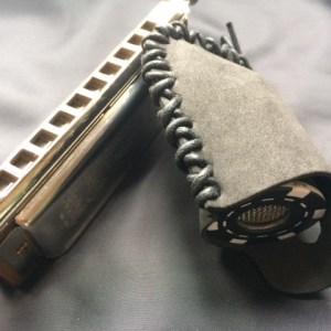 Silverfish - blues bullet (b)
