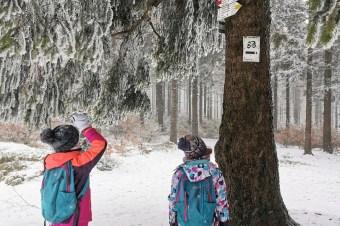 Zimowe szlaki w Sudetach: Kalenica – Góry Sowie
