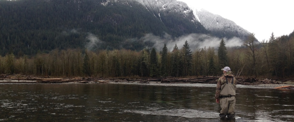 fly fishing, fly fishing trips, fly fishing guides, vancouver fly fishing, guided fly fishing vancouver, bull trout fly fishing, trout fly fishing vancouver, squamish river fly fishing