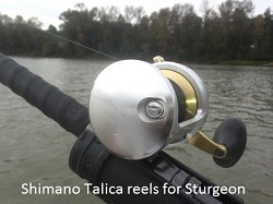 sturgeon-fishing-gear