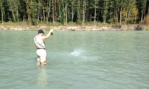 fly fishing, salmon fly fishing, salmon fly fishing vancouver, salmon fly fishing bc, salmon fly fishing british columbia, salmon fly fishing canada, salmon fly fishing fraser river, salmon fly fishing trips, vancouver fishing guides, vancouver fishing trips