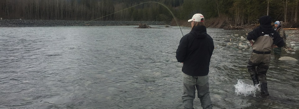 fly fishing, steelhead fly fishing, chilliwack fly fishing, bc fly fishing, fly fishing guides, chilliwack fishing
