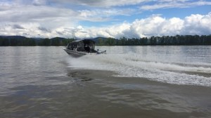 jet boat, fraser river, sturgeon fishing, sturgeon fishing fraser river