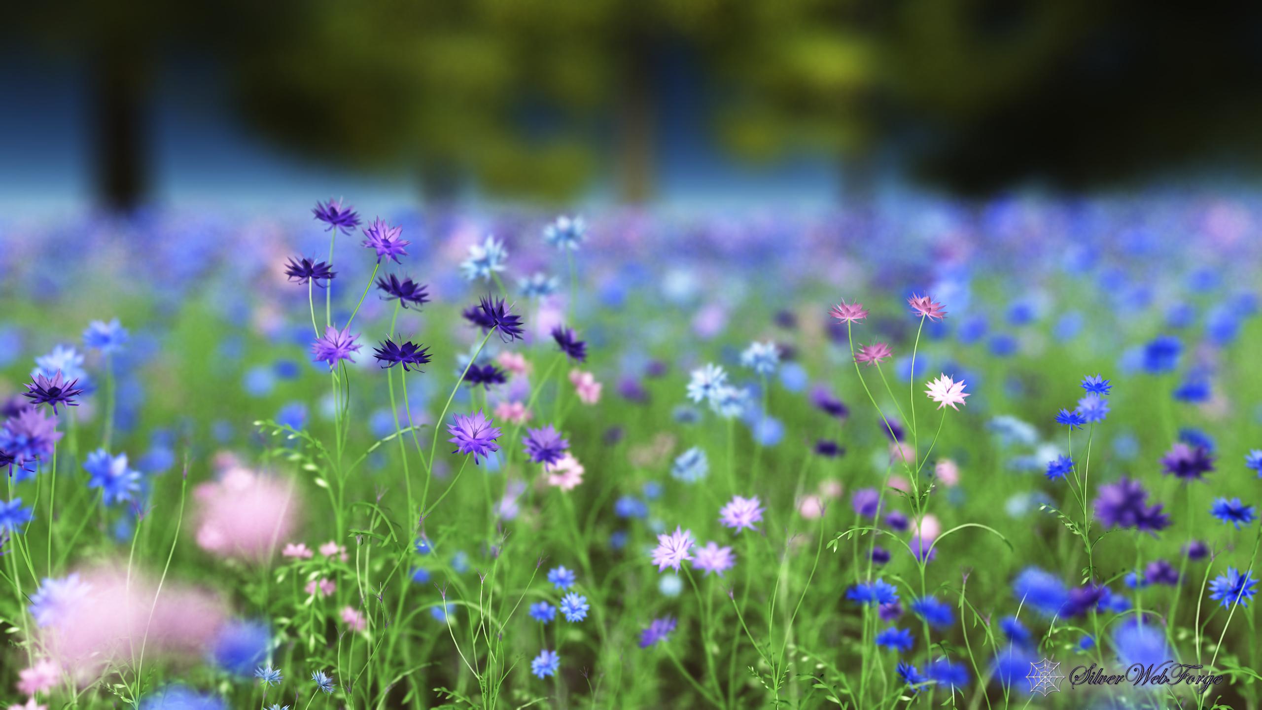 Cornflower Blue Silverwebforge