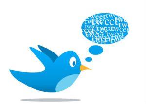 Tips básicos para pasar de novato a experto en Twitter.
