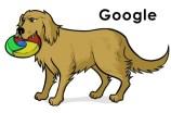 Google: Fiable, y no es probable que nos abandone dentro de poco (o eso esperamos).
