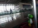 De vuelta a casa - Bruselas