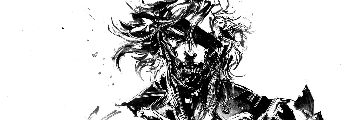 Metal Gear - Raiden