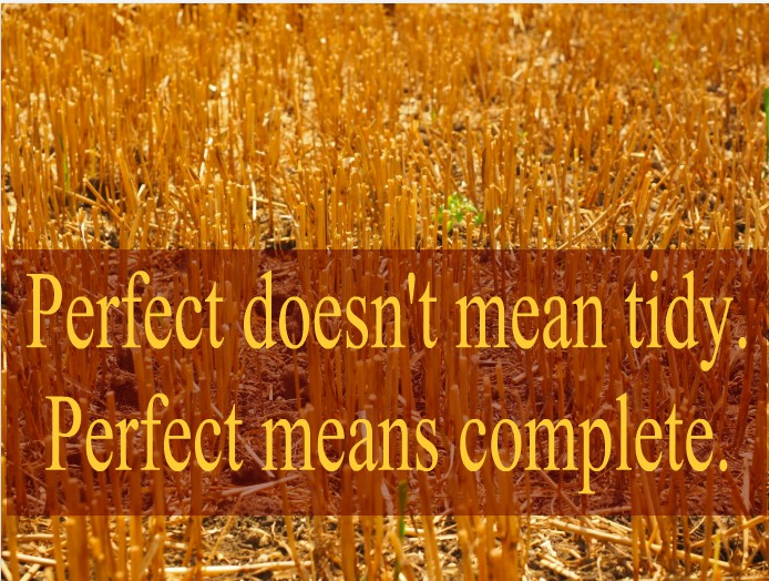 Perfect means complete