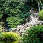 {day 203 project365 2015… japanese garden view}