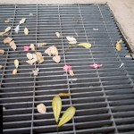 {Trey USA San Antonio walk – decorated drain}