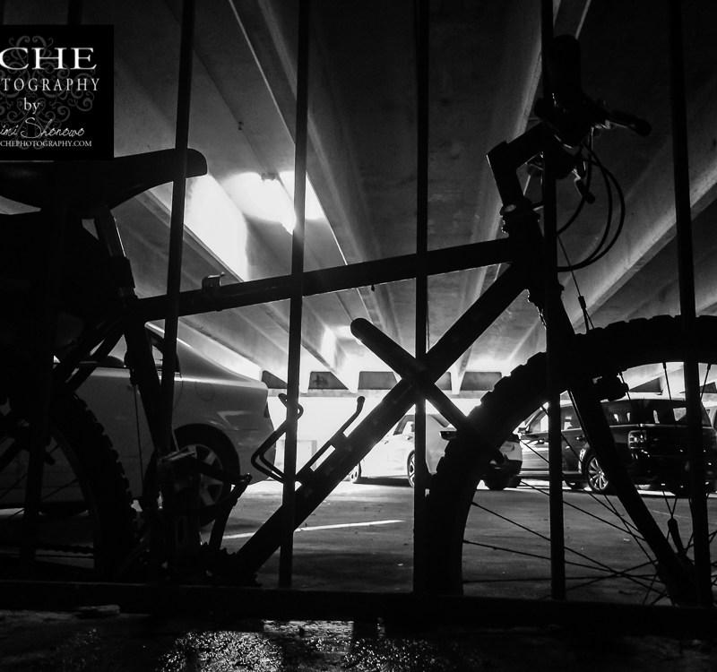 {day 311 mobile365 2016… biker bars}