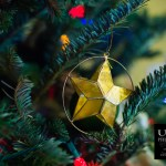 {day 342 project365 2016… star ornament}