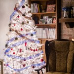 {day 355 project365 2016… seated by the Christmas tree}