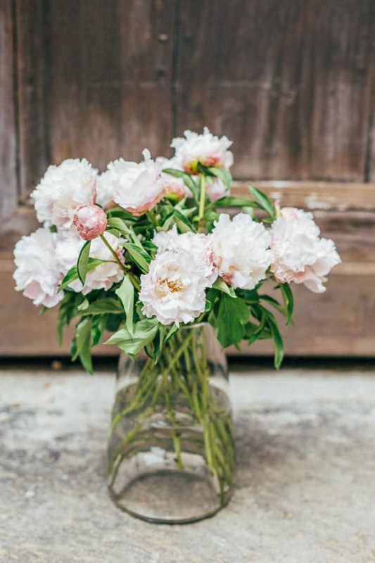 bouquet wild romantic peonie simmi