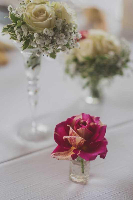 Rose Detail - Botanical - PH Whiteink: