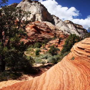 Striated rock at Zion National Park.