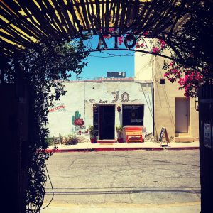 View through a portico at Tucson's Old Town Artisans.