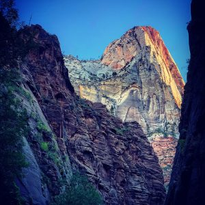 One of the temples views from the Narrows at Zion National Park.