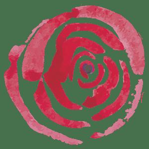Simona Cavina rosa