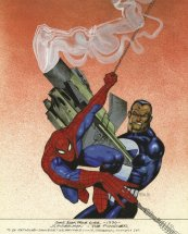 spidey vs punisher