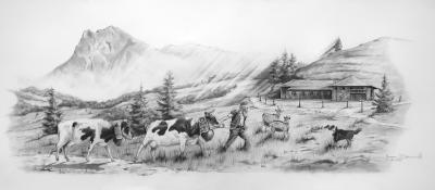 """""""Là-haut, sur la Montagne"""" <br/> 35 x 80 cm <br/> Crayons gris sur fond blanc"""